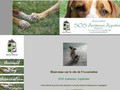 Association SOS Animaux Aquitaine