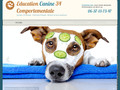 Education canine 34